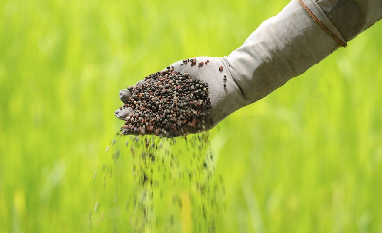 fertilizante eximgro