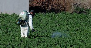 Aplicacion de fertilizante foliar