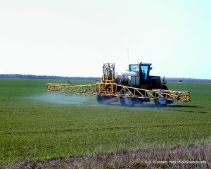 Dap fertilizante aplicación