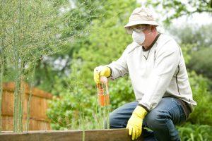 Beneficios de los fertilizantes quimicos
